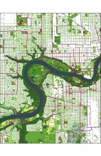The Ecology network assessment highlights which open spaces provide the greatest contribution to the urban ecosystem.