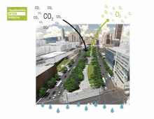 Exemplary environmental project: In addition to reducing the heat island effect and retaining more than the 80th percentile of rain events, the tree cover will sequester 233 tonnes of CO2 and intercept more than 21 million liters of rain over the next 25 years.