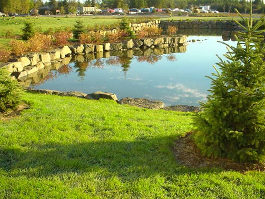 Thunder bay regional hospital integrated storm water for Design of stormwater ponds