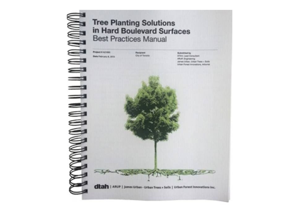 Tree Planting Solutions In Hard Boulevard Surfaces Best